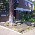 Gartenbau 2011 Frühjahr - Sommer 116