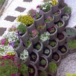 Gartenbau 2011 Frühjahr - Sommer 134